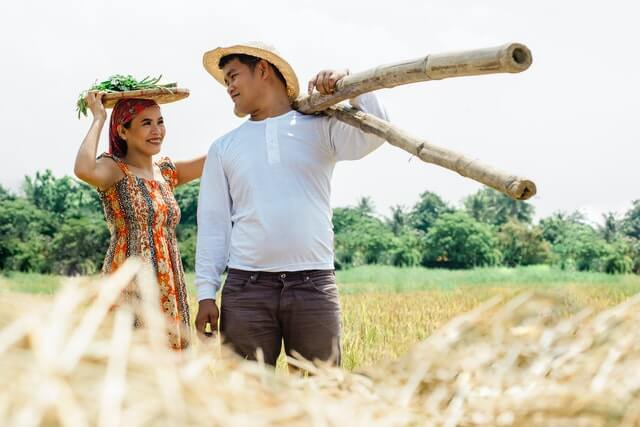 Couple helping in the farm as part of WWOOF jobs abroad